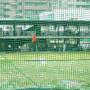 Piłkochywyty na pola golfowe