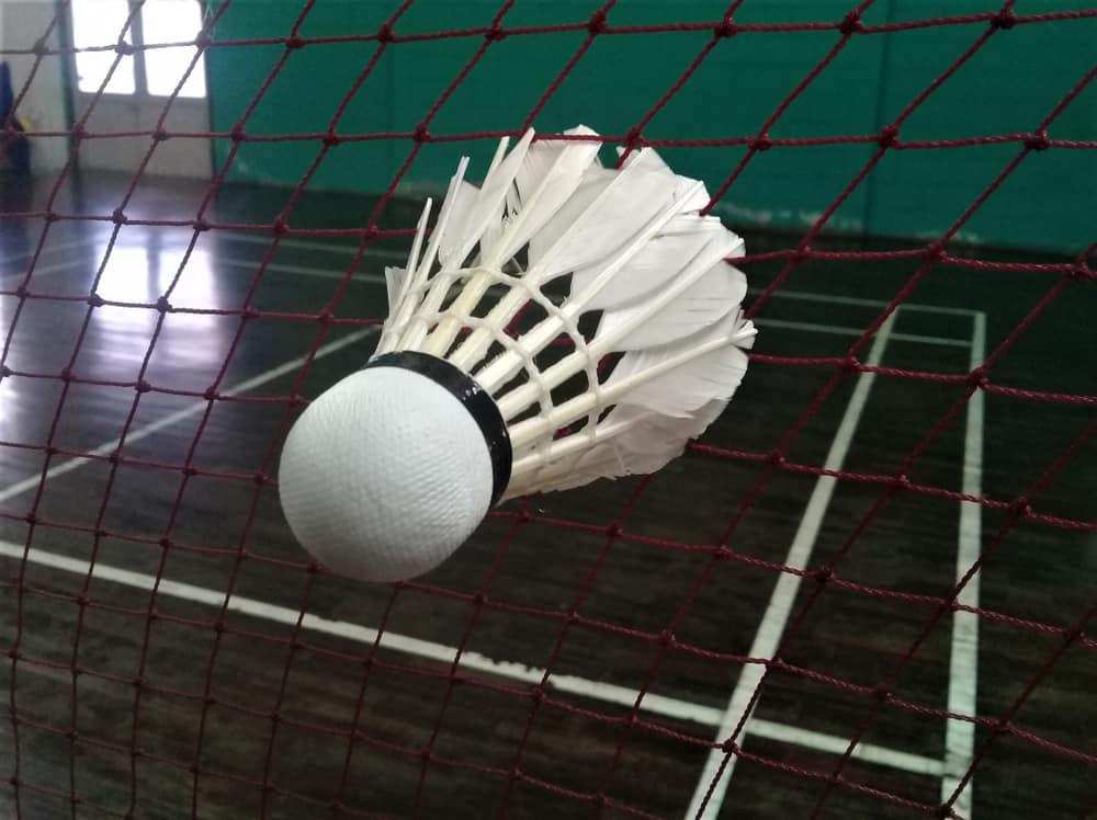 Siatka do badmintona - jak wybrać - sieci-siatki.pl