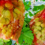 Jak zabezpieczyć winogrono przed ptakami?